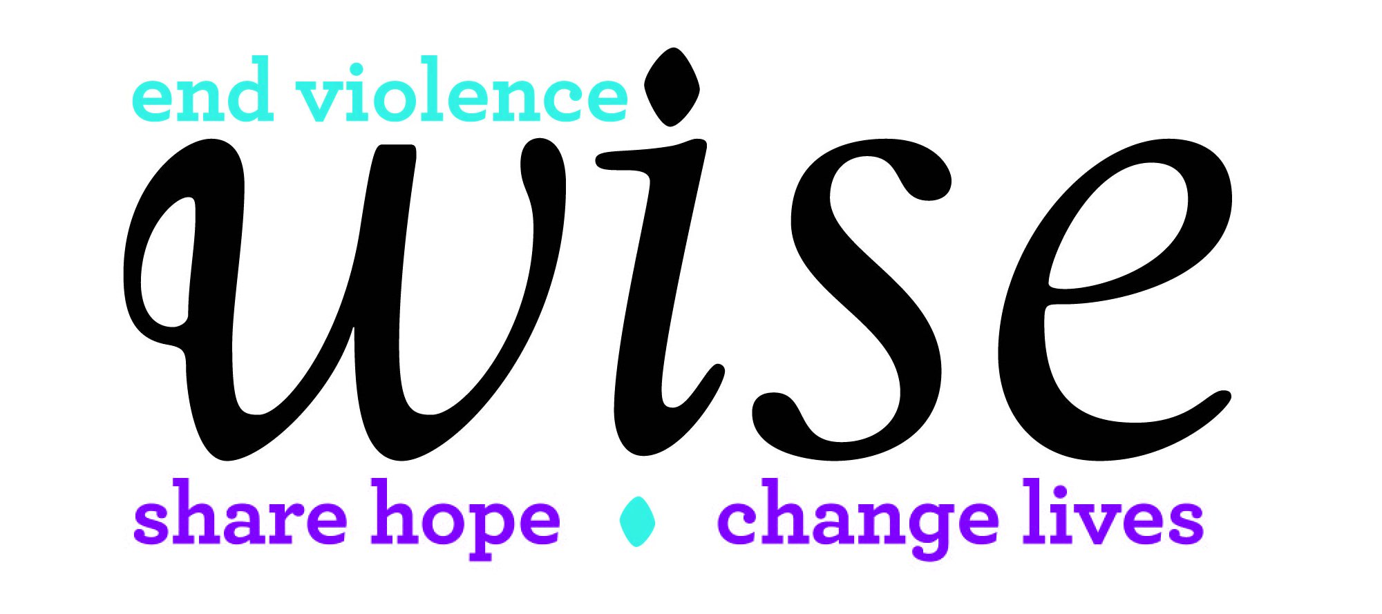 WISE Partner Logo